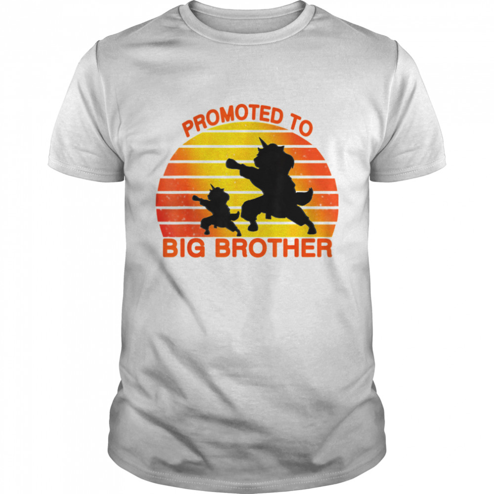 Promoted To Big Brother 2021 Leveled up to Big Brother Again shirt Classic Men's T-shirt